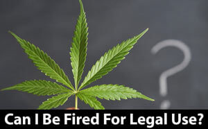 Can I Be Fired for Smoking Weed Legally?