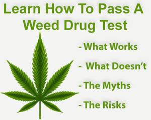 Learn To Pass A Weed Drug Test With Confidence.