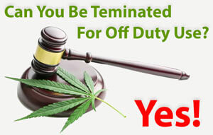 Can You Be Fired For Off Duty Marijuana Use?